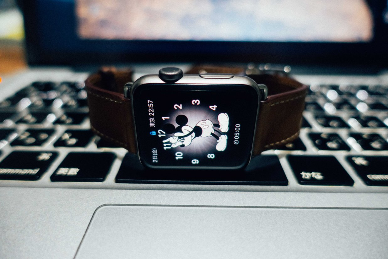Apple Watch横