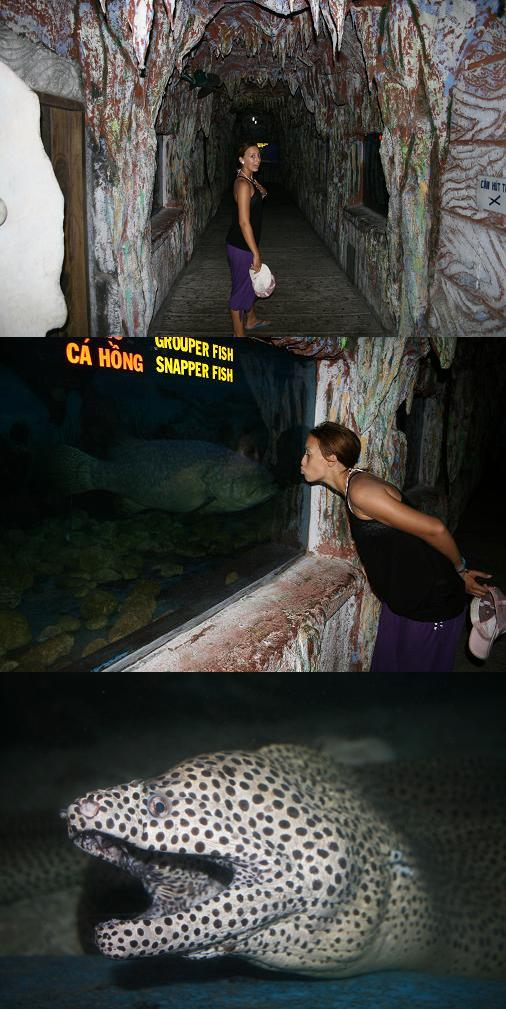 Alone in the Tri Nguyen Aquarium