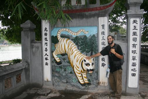 The white tiger in Hanoi