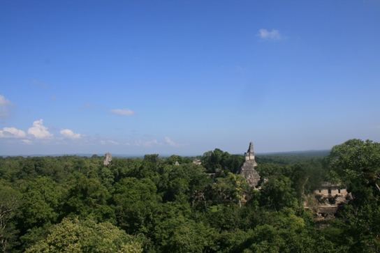 View from temple V