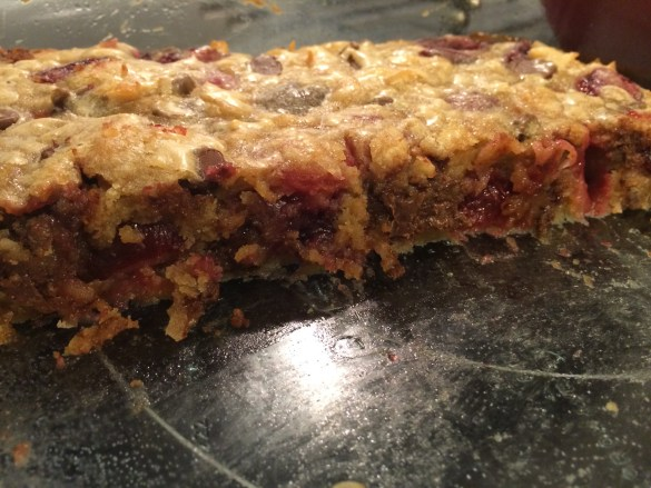 Cherry Coconut and Chocolate Chip Blondies - Take A Bite Out of Boca