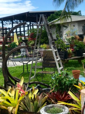 City of Wilton Manors Tour, The YARD