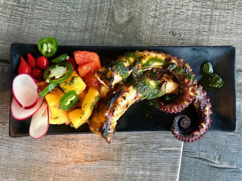 Casa Sensei Fort Lauderdale, Grilled Octopus