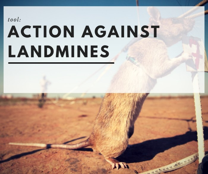 TOOL: Action Against Landmines