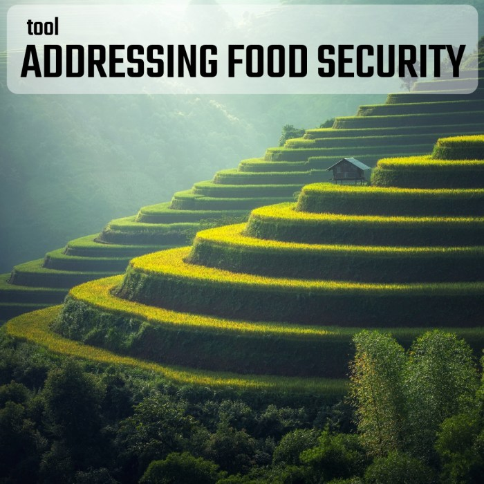 TOOL: Addressing Food Security