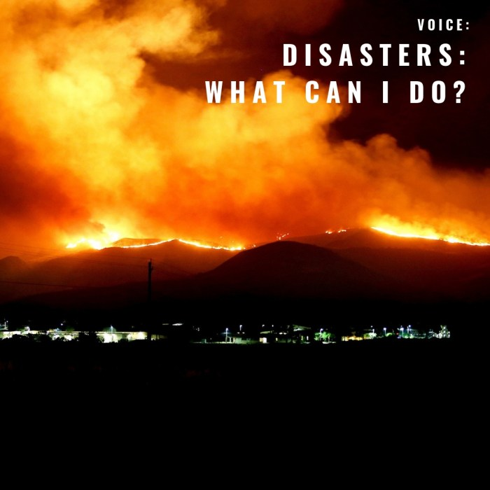 VOICE: Disasters: What Can I Do?