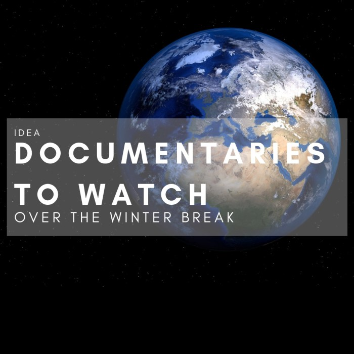 IDEA: Documentaries to Watch Over Winter Break