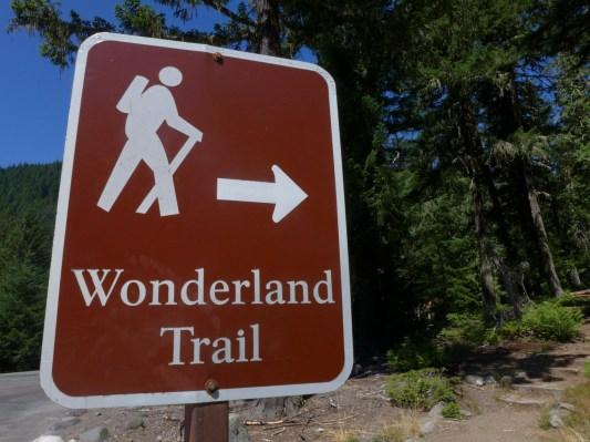 Wonders Ahead!