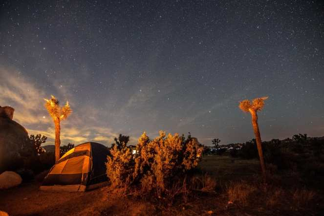 campfire campsite Joshua tree stars starry sky