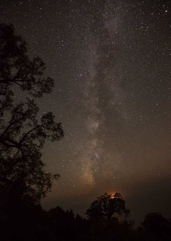 Milky Way stars starry night sky live oak