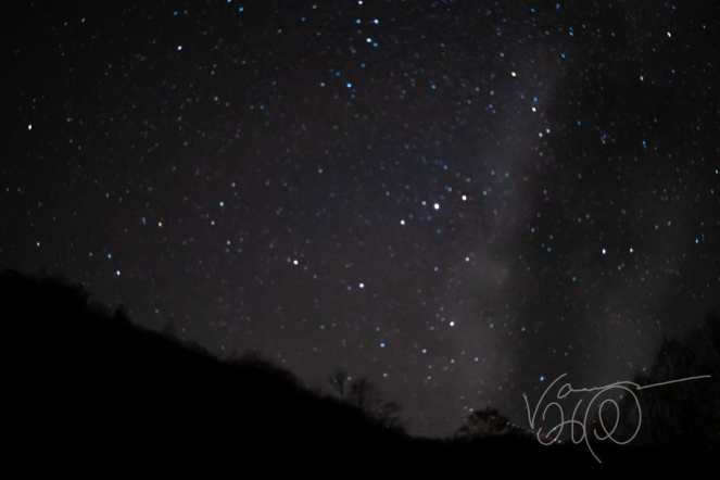 blue and white stars shine in the night sky near the Milky Way over Savage River State Forest Maryland