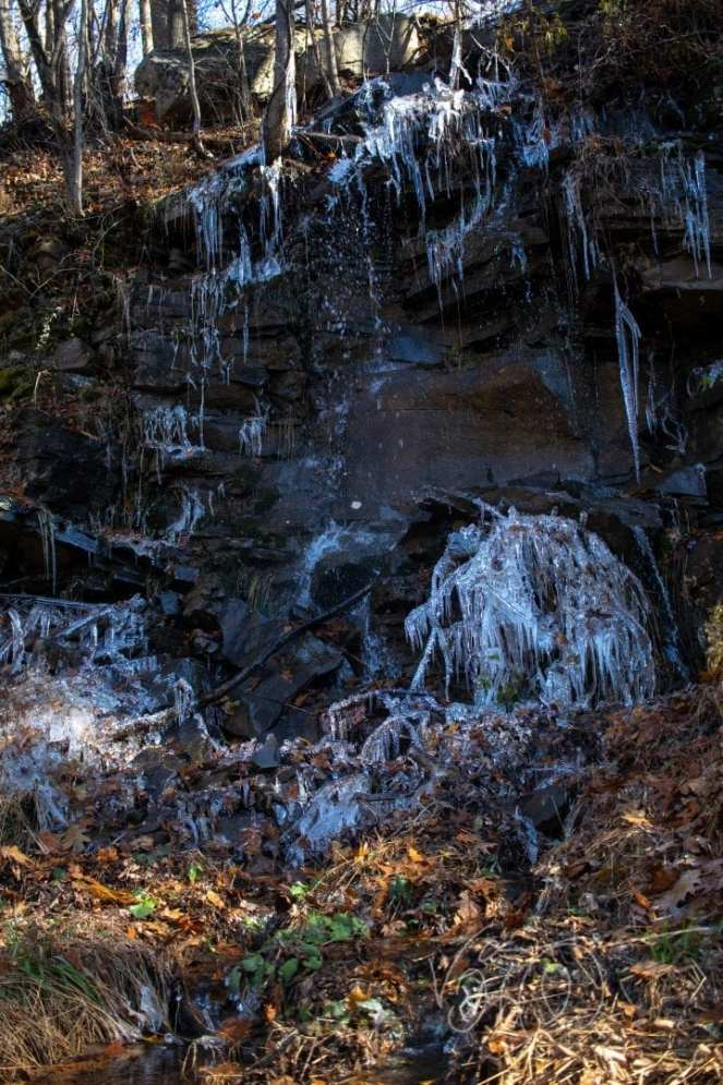 underground water spring flows and freezes on the face of some rocks in Savage River State Forest Maryland