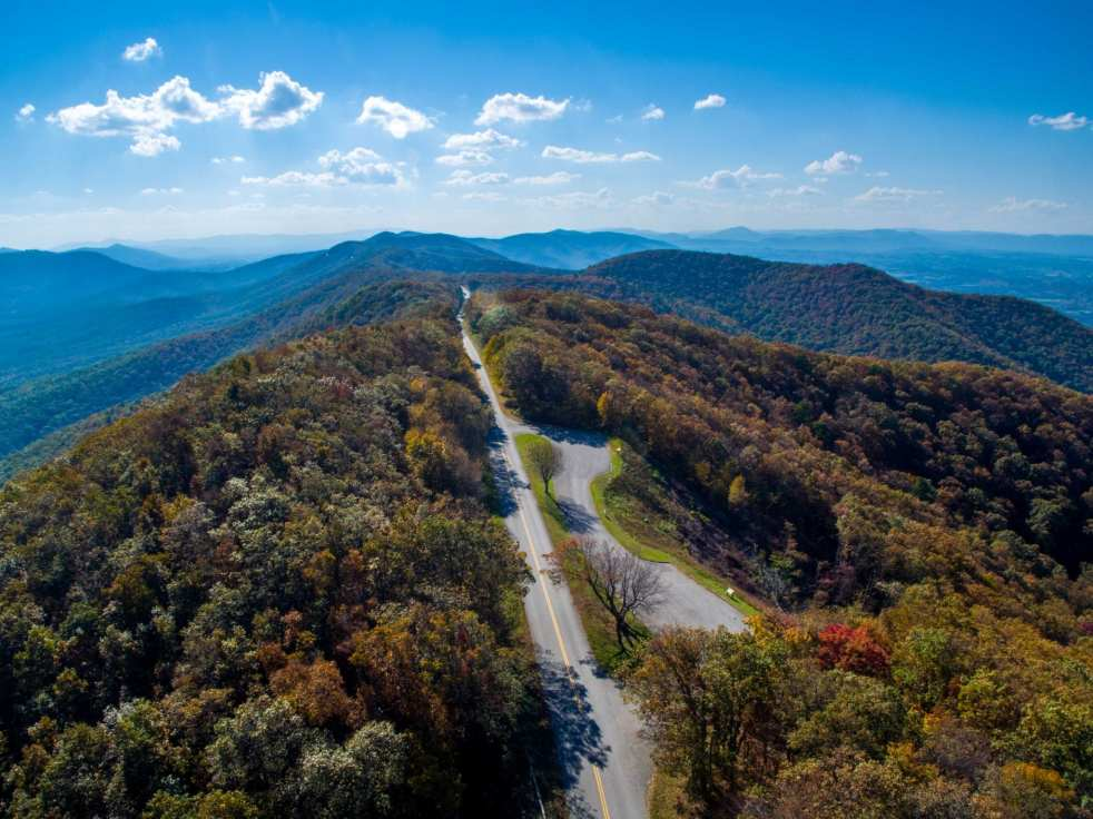 Blue Ridge Parkway splits a mountainous ridge surrounded by trees