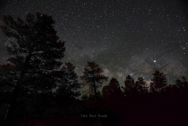The Milky Way lines the lower edge of a dark starry night sky, illuminating the silhouette of a very dark forest. Learn about the gear you need to take pictures of the milky way.