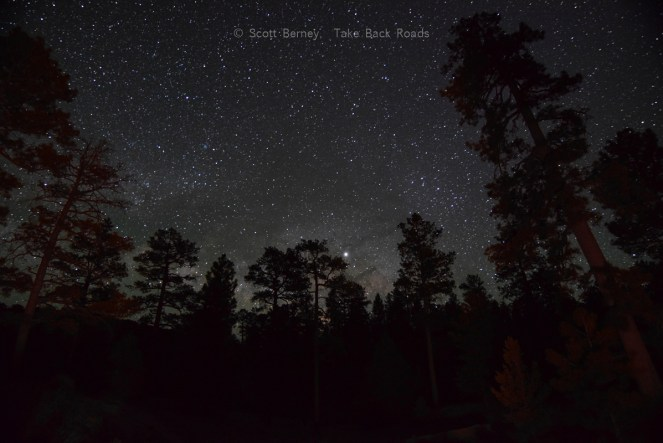 Learn how to take pictures of the Milky Way. The Milky Way just starts to peek over the horizon, through the dark silhouettes of trees in the foreground. A starry sky shines overhead.