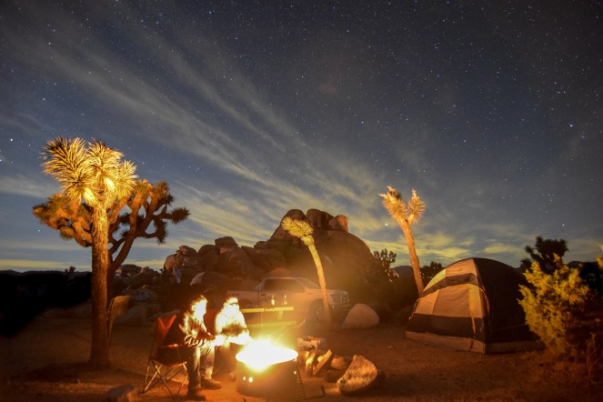 Two men sit next to a bright campfire. The fire illuminates their faces, the tall joshua trees surrounding them, their tent, and the truck and rock formation behind it.