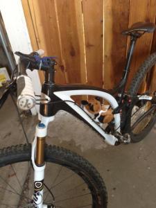 easp bike3