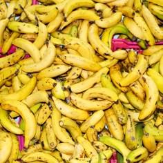 bananen_8224
