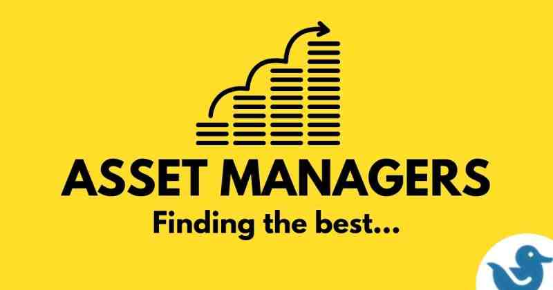 Best asset managers in South Africa