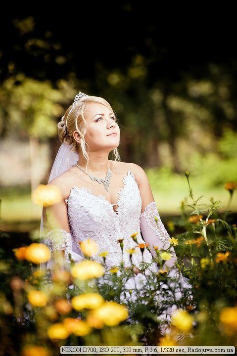 ищу начинающего фотографа на свадьбу может
