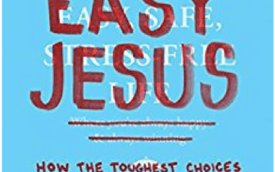 Review by Rayna:  No Easy Jesus