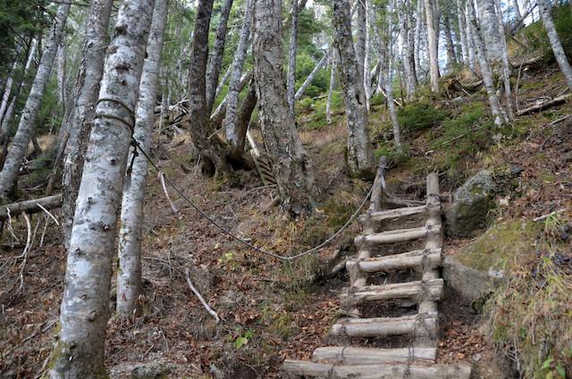 空木岳 池山尾根登山道