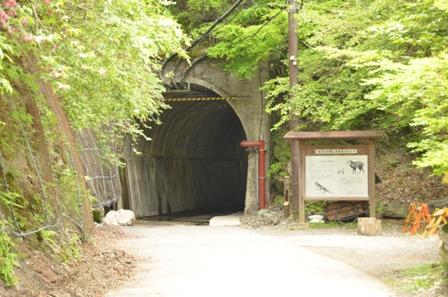 寸又峡 天子のトンネル