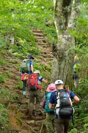 荒島岳 登山 階段