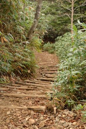 志賀高原 池めぐり 下り階段