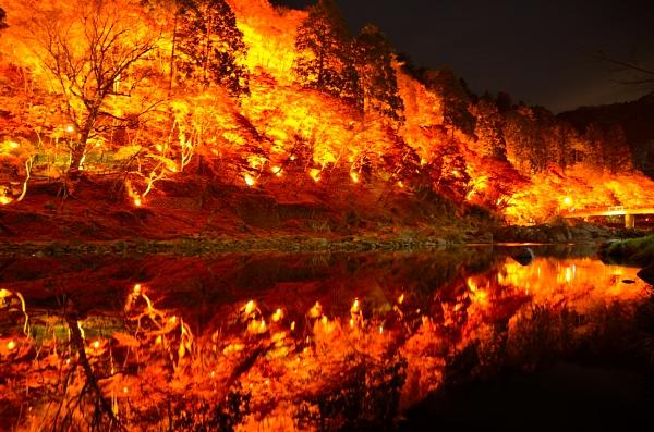 香嵐渓 ライトアップ ライトアップ