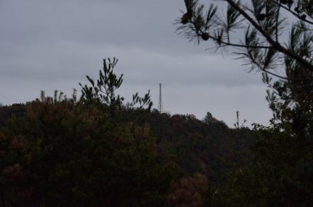 鳩吹山 山頂 鉄塔