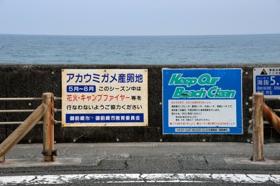 御前崎ケープパーク(遊歩道)ウミガメ産卵場所