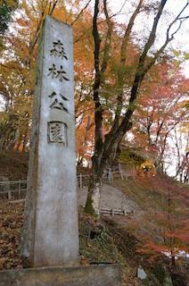香嵐渓 森林公園