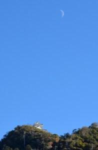 金華山に登山!馬の背ルートは厳しかったけど、岐阜城からの眺めは素晴らしかった!