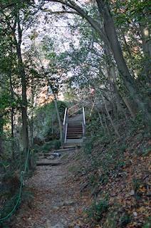 金華山 馬の背登山道