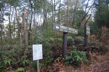 石原口登山道