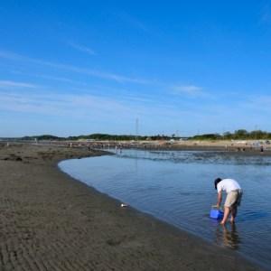 愛知県、知多半島の奥田で潮干狩り!友達や家族連れでバーベキューをするのもオススメです。
