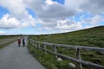 美ヶ原高原 ハイキング道