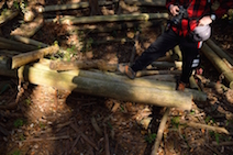 猿投山 登山道