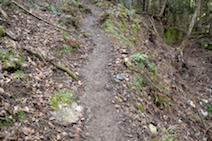 霊仙山 榑ヶ畑登山道
