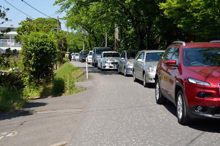 津島市 尾張津島 藤まつり 駐車場渋滞