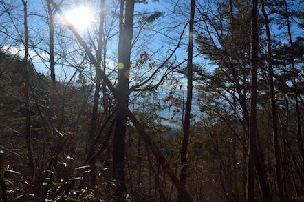 本高森山 登山