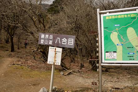 藤原岳 表登山道(大貝戸道)
