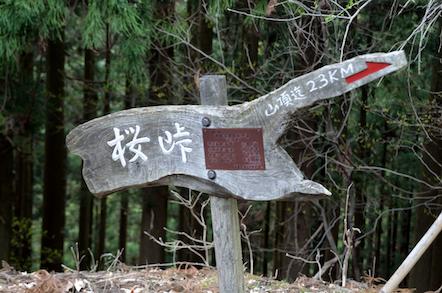 舟伏山 東ルート 夏坂林道入口(お墓)コース 桜峠