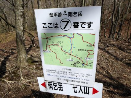 雨乞岳 登山 武平峠コース 7番