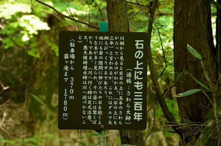 田立の滝 石の上にも300年 さわら大師