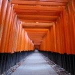 京都一周トレイル 東山コース コース番号1 伏見稲荷 千本鳥居