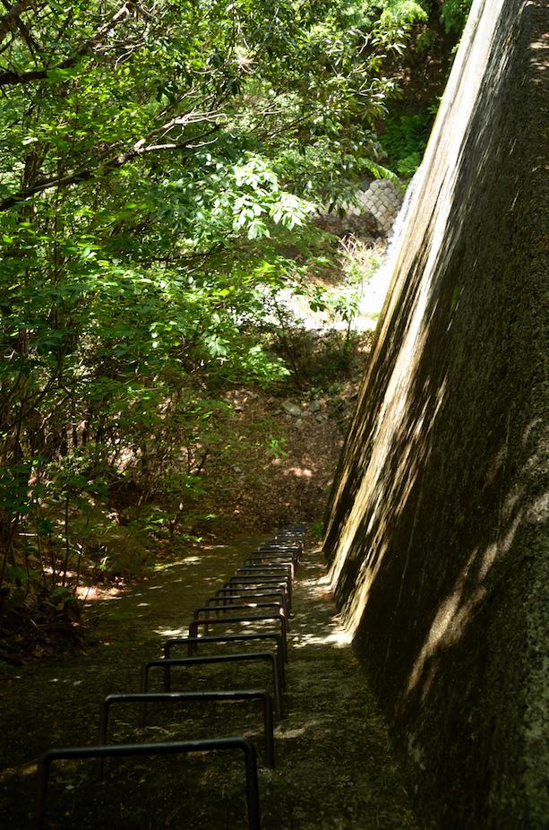 竜ヶ岳 中道登山道 ヨコ谷