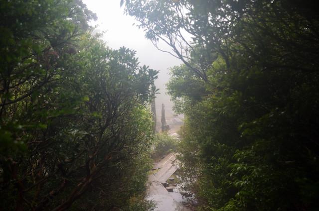 屋久島 登山 淀川小屋〜花之江河