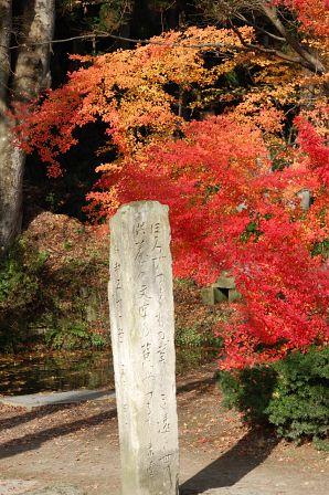 ほろびゆくもの美しき遠き世の 供養の文字乃苔にやつるも